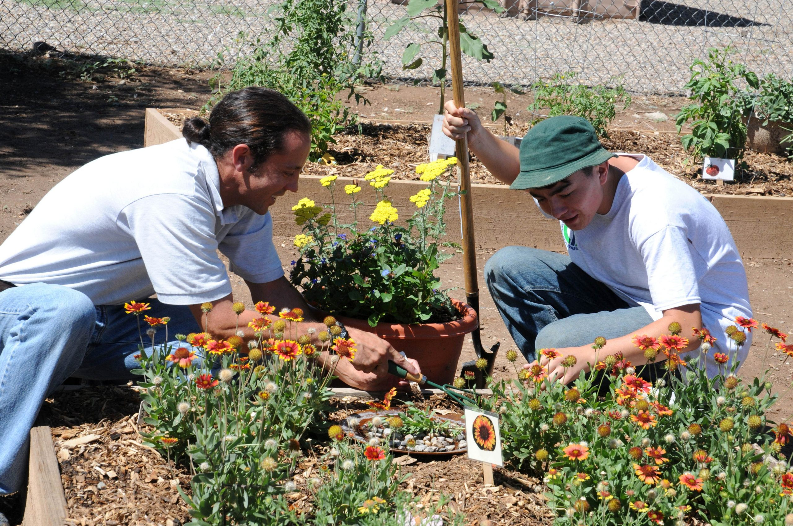 two young men working on a community garden