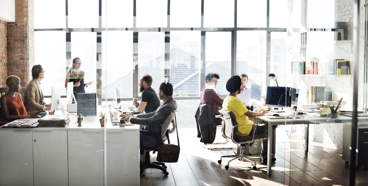 Group of diverse people sit around desks in an office